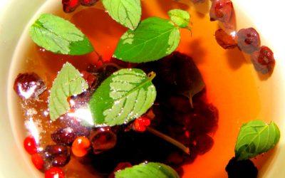 Schizandra Berry & Peppermint Tea