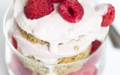 Banana Layer Cake with Screamin Brothers Raspberry Frozen Treat