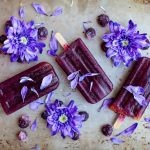 Creamy Blueberry Coconut Popsicles