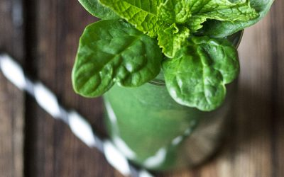 Fresh Mint Green Smoothie
