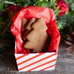 Gingerbread-Cookies.jpg-1024x683